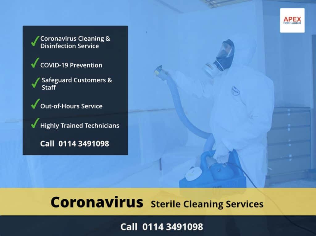 coronavirus cleaning service