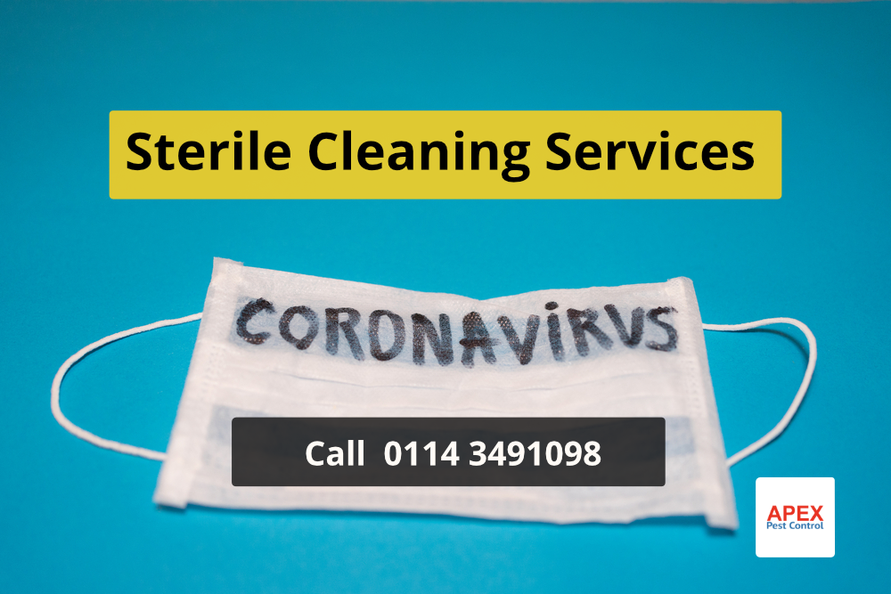 Coronavirus sterile cleaning service