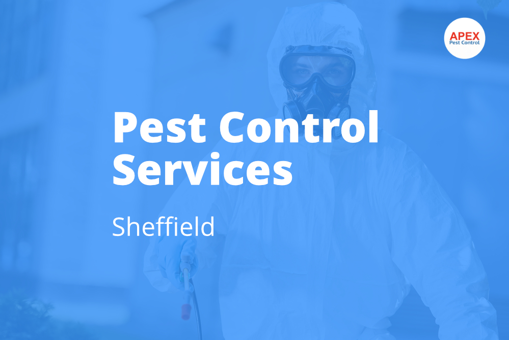 pest control services sheffield