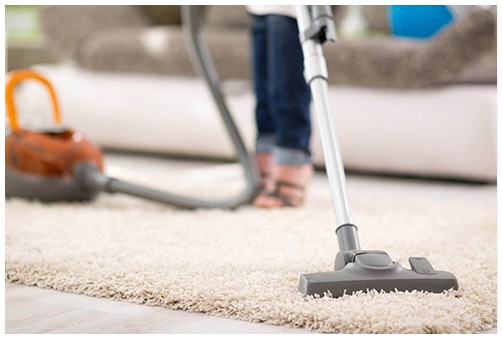 clean home helps pest control
