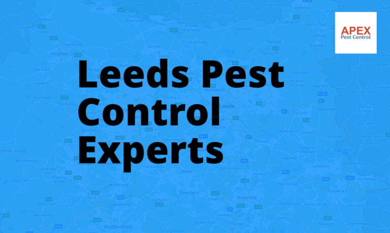 pest services Leeds